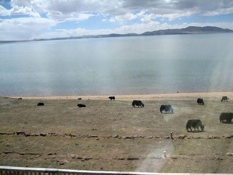 ツォナ湖です
