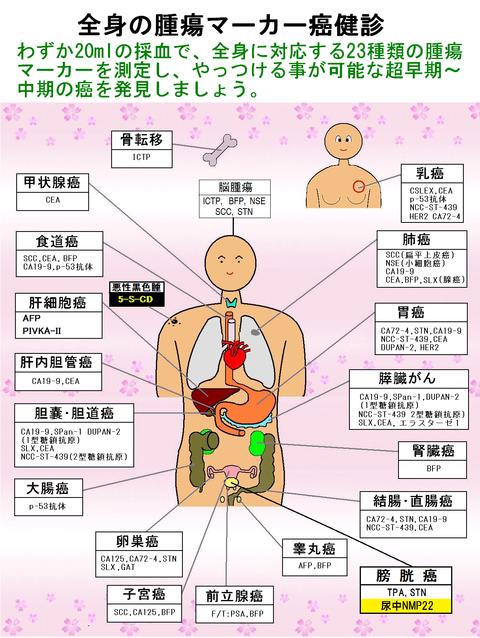 全身の腫瘍マーカー癌健診23ΔPG