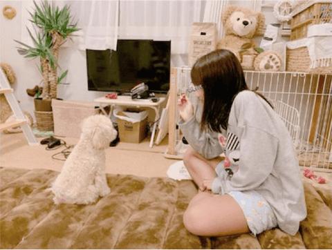 辻希美、愛犬との戯れを報告するも非難轟々「床に沢山敷いて不潔」「部屋がきたない」