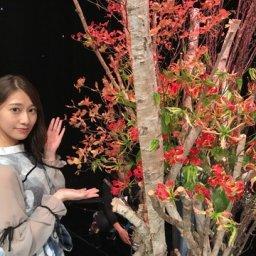 【乃木坂46】桜井玲香と『華』…