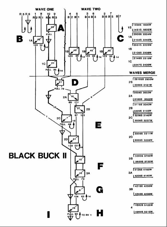 ブラックバックの画像 p1_20