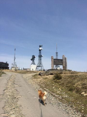 0014テレビ塔