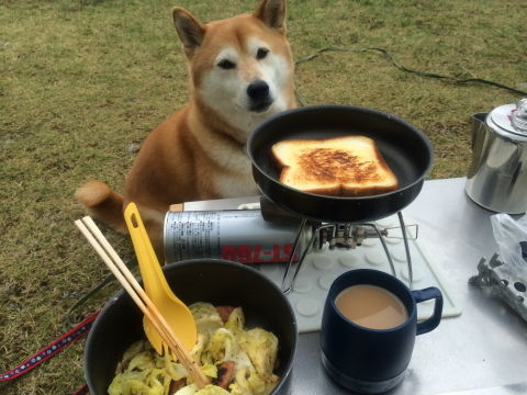 0013朝食