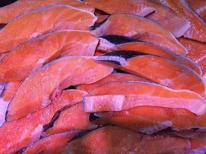 salmon-1596027_640