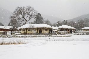 heavy-snow-4968549_640