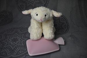 sheep-4506394_640