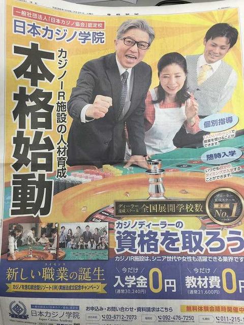 日本カジノ
