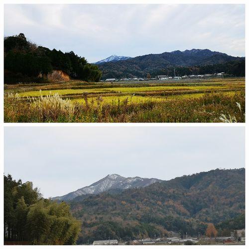 高竜寺山は白く雪化粧です