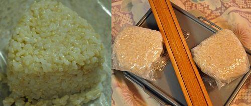 発芽玄米食で玄米からバランスのよいミネラルや繊維
