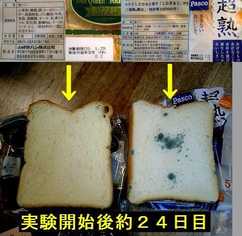 山崎パンと敷島パンの比較
