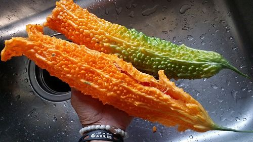 この種を食べると美味しいです
