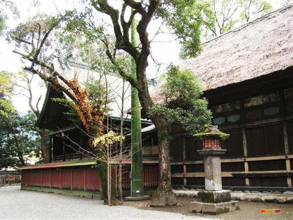 青井阿蘇神社 本殿 幣殿