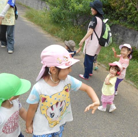 うさぎ散歩2