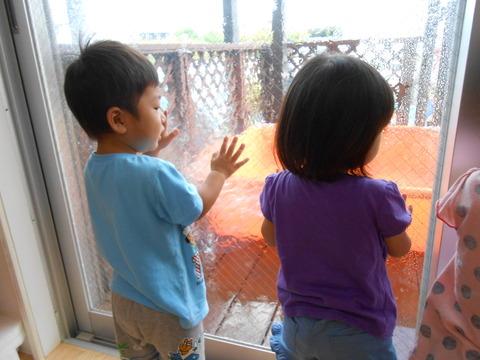 外を見る2 (2)