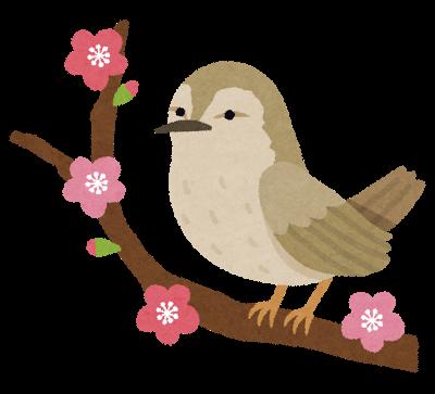 bird_uguisu