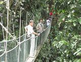 吊り橋 2