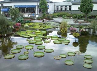 植物公園4no1