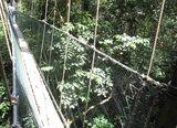 吊り橋 1
