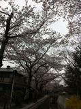 西井ブログ写真