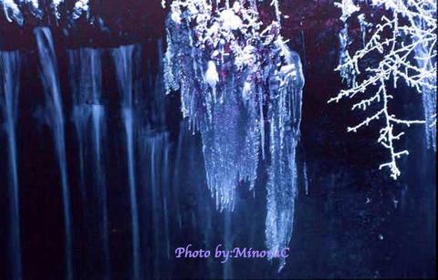 Image00505_jpgのコピー