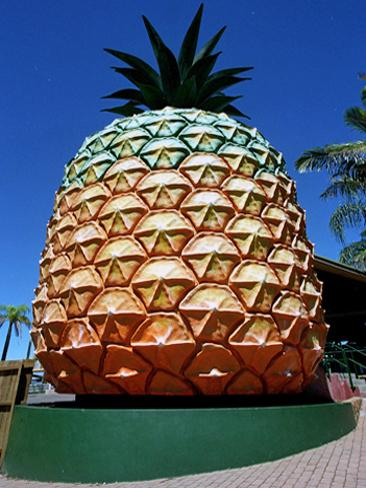 big-pineapple