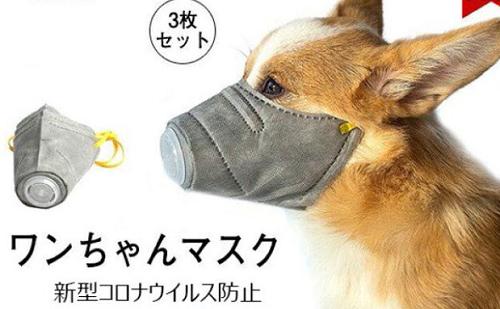 コロナ対策といって犬にマスクをするのは絶対にダメ! 「こんなものを動物の事も考えず売っているのが信じられない」と専門家が警告