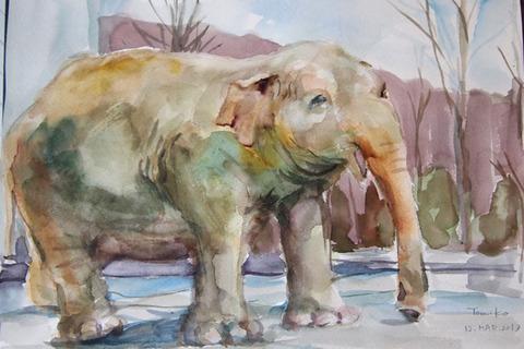 茶臼山動物園のゾウさん