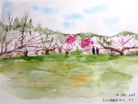 信州のおそい春--梅園を歩く