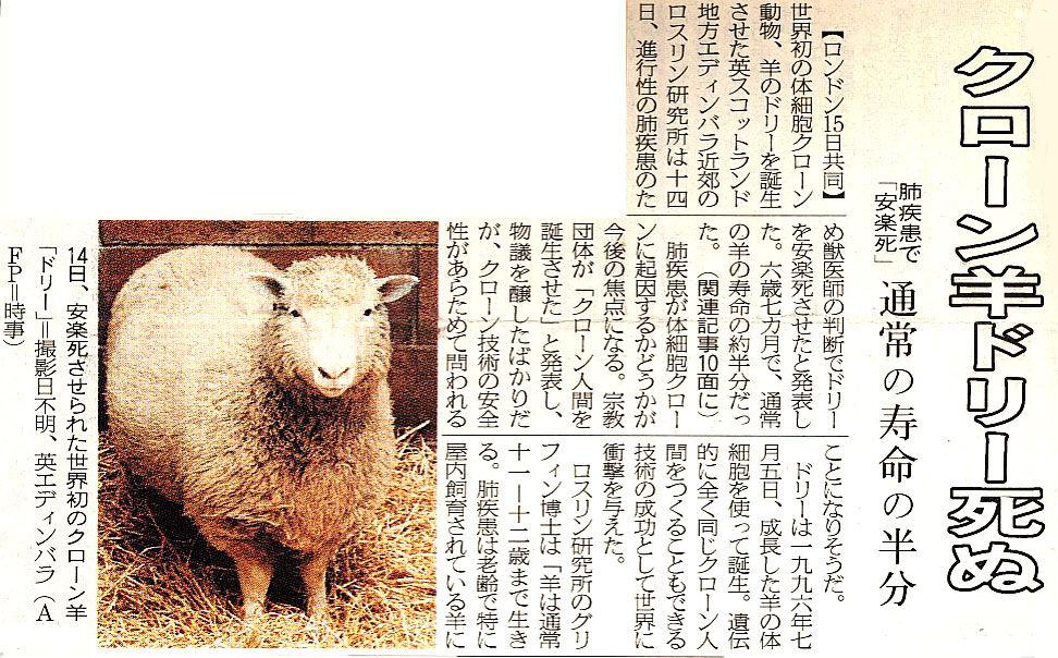 スジエビの不思議  羊 (4)  クローン羊のドリー・続編コメント                        やっさん