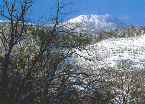 雪の空沼岳 (2)