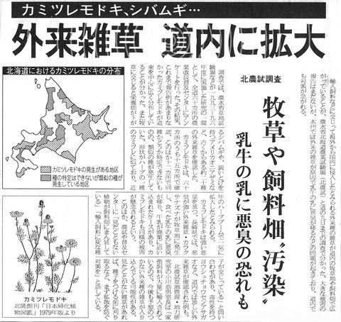 カミツレモドキの新聞記事