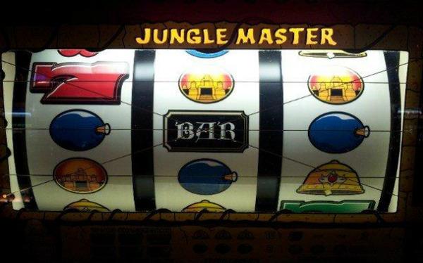 ジャングルマスターコングダム