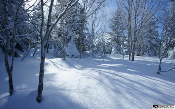 雪の日は出るらしい