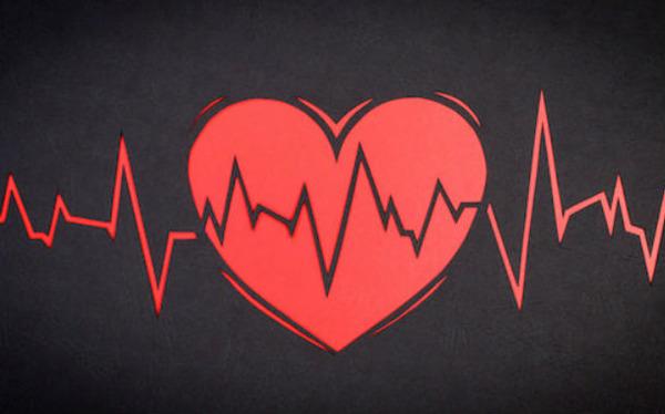 heart-rate-cardiogram