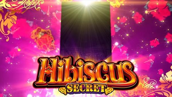 hibiscus007