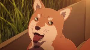 犬アニメ201909152323