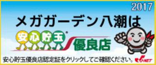 メガガーデン八潮店2