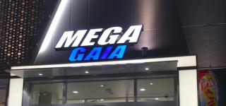メガガイア蒲田2