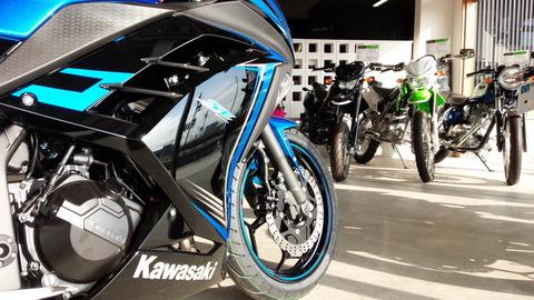 カワサキニンジャ250SpecialEdition2015年モデル