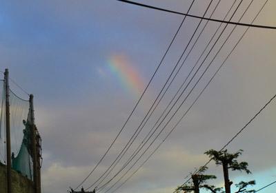 20081028虹