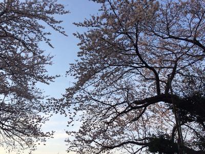2014-03-29-17-20-37