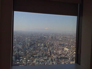 初台から臨む富士山