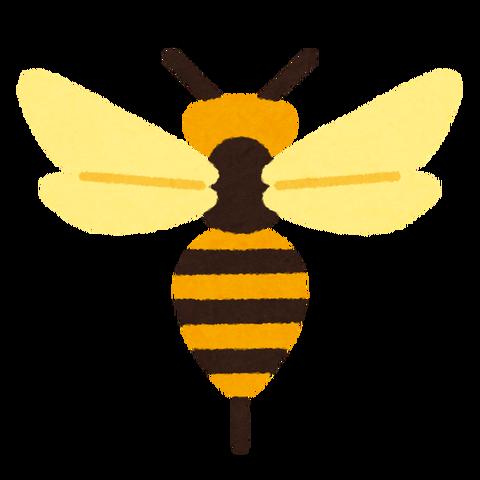 bug_mark13_hachi