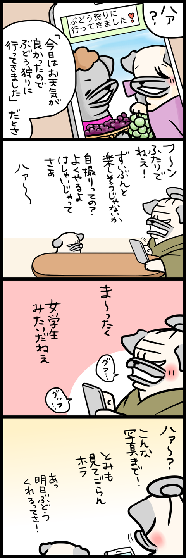 sh477