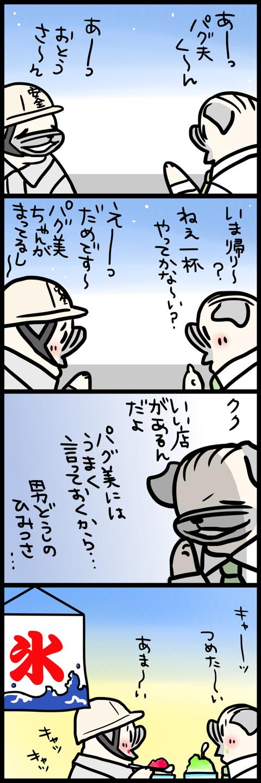 sh446