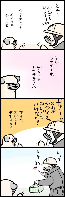 sh304