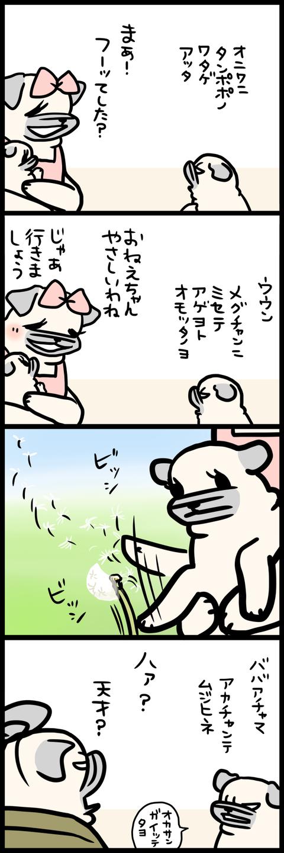 sh666