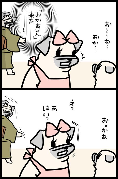 sh851