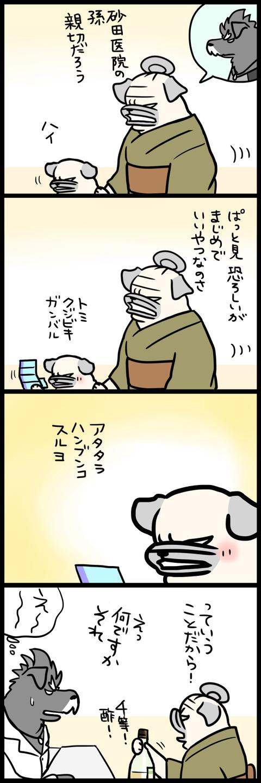 sh500