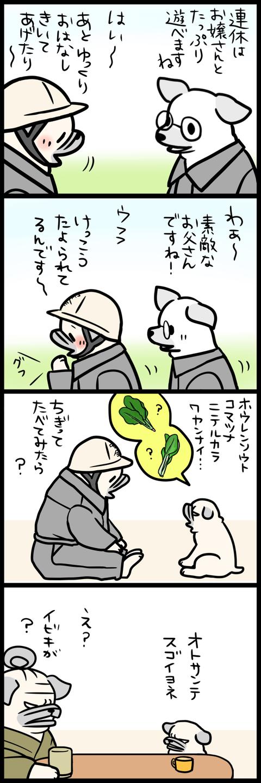 sh331
